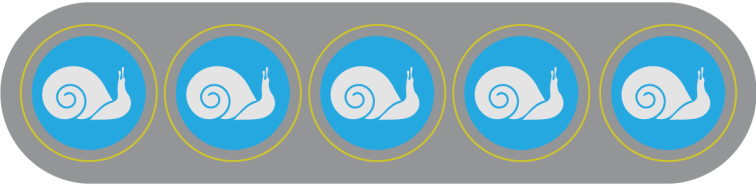 snail5